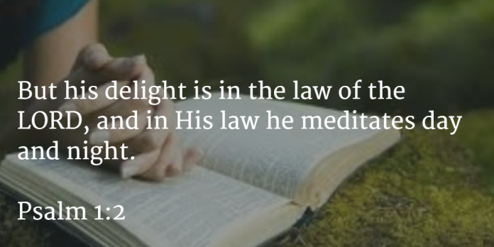 WORD FOR TODAY :  A Man Who Loves the Word