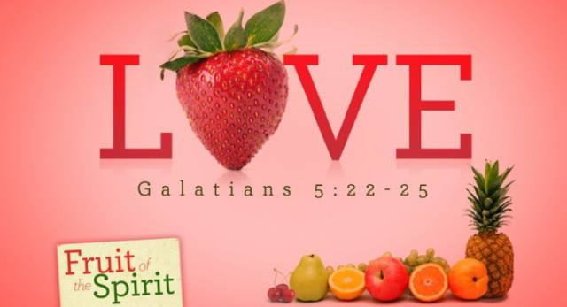 Image result for THE FRUIT OF LOVE""