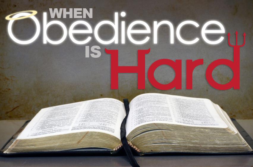 obedience Перевод слова obedience, американское и британское произношение, транскрипция, словосочетания, однокоренные слова, примеры использования.